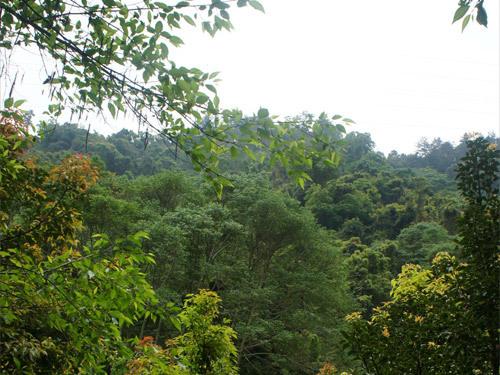 林務局種苗繁殖場