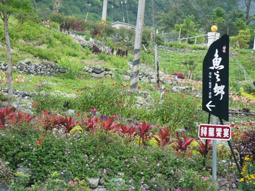 松鶴部落後花園